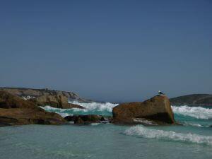 Orleans Bay Caravan Park - 3rd Beach surf