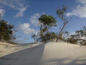 Orleans Bay Caravan Park - Cape Le Grand