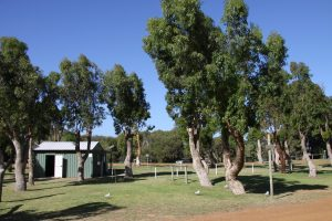 Orleans Bay Caravan Park - Powered Sites